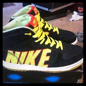 Nike Dunk High Premiums! Size 10